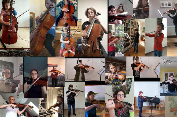 Streicher der Musikschule Mittelsachsen
